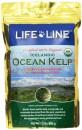Life Line Ocean Kelp天然有機海藻粉1.5lb